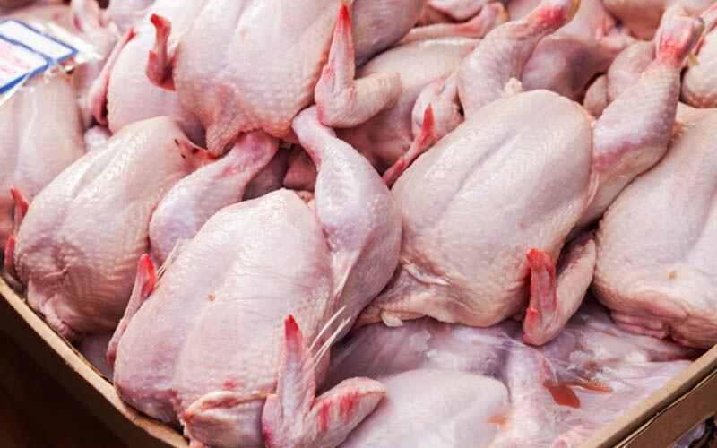 خبرنگاران مرغ فروشی های مریوان مغازه های خود را بستند