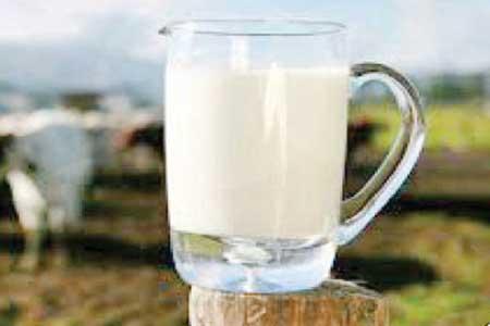مزایای پروتئین شیر چیست؟