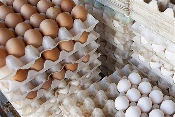 این بار نوبت تخم مرغ شد، هر شانه نزدیک به 40 هزار تومان